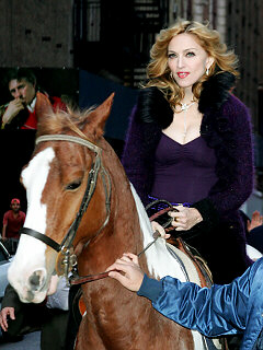 Madonna falls from horse again, injuring herself