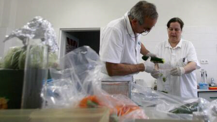 Medical researchers take samples from cucumber in Brno, Czech Republic