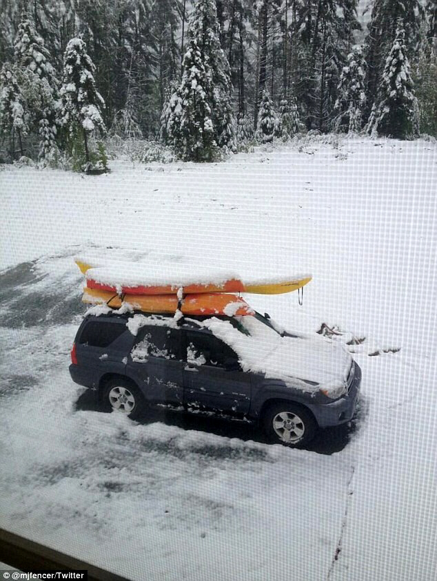 New Hampshire residents posted photos of the snow