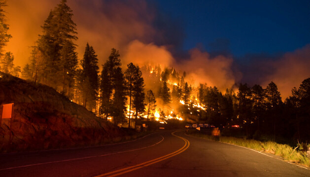 The Little Bear Fire spreads across a road in the Lincoln National Forest