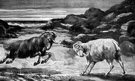 And as I was considering, behold, an he goat came from the west, on the face of the whole earth, and touched not the ground: and the goat had a notable horn between his eyes. And he came to the ram that had two horns ... and ran unto him in the fury of his power.